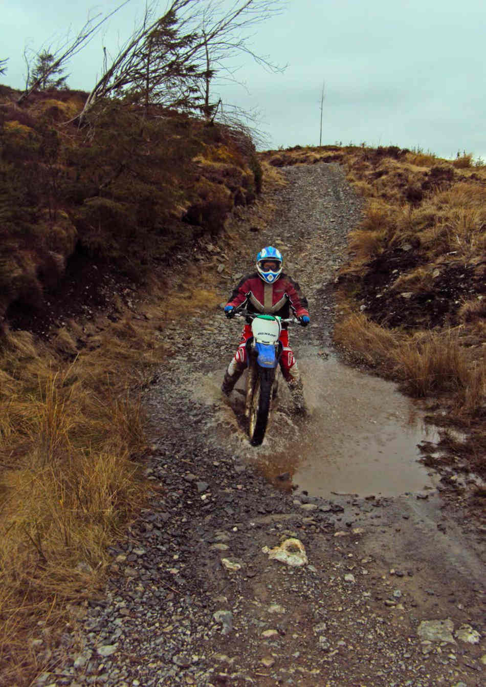 Jan on the TT-R 230, gently riding through a puddle on a gravel track
