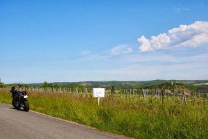view of the french vineyard from the road, with a really blue, sunny sky, with the KTM in the distance.