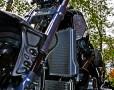 Terminator (crop)
