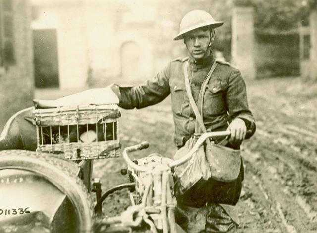world-war-1-despatch-rider